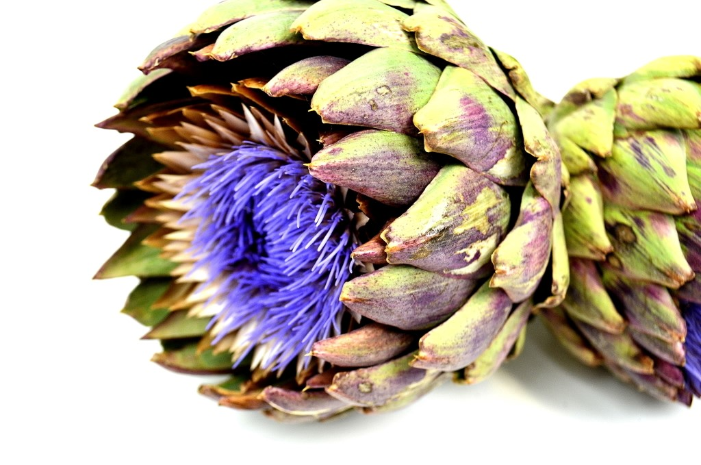 Picture of Artichoke GLOBE